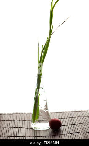 iris in a vase and an apple on a bamboo litter isolated on white - Stock Photo