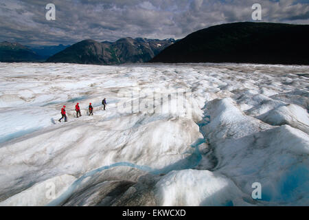 Visitors Trekking On Hole In The Wall Glacier Juneau Icefield Southeast Alaska Summer Tongass Nat Forest - Stock Photo