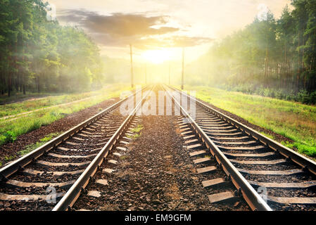 Fog over railroad in forest at the sunrise - Stock Photo