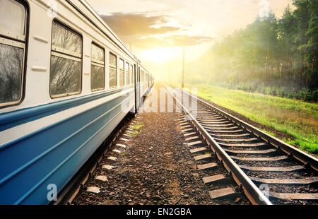 Train moving through the pine forest at sunset - Stock Photo