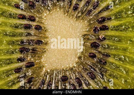 Close-up Macro Photograph of a Kiwi Fruit - Stock Photo