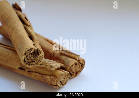 Cinammon Sticks (True Cinnamon) - Stock Photo
