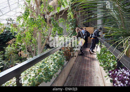 Barbican conservatory inside the Barbican Centre, London, England - Stock Photo