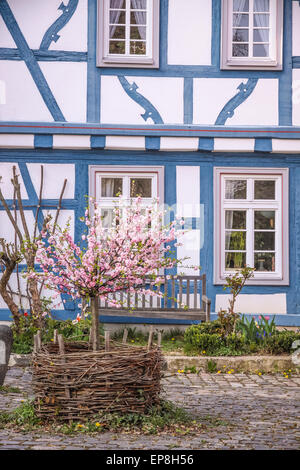 Historic half timbered house blue door stock photo for Blue piscine colmar