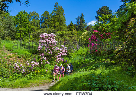 People Walking Near Flowers In Central Park New York City