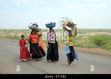 Rural women in traditional dress ; Mandvi ; Kutch ; Gujarat ; India NO MR - Stock Photo