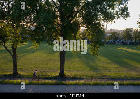 Couple walk under 100 year-old ash trees in a park in the south London borough of Lambeth. - Stock Photo