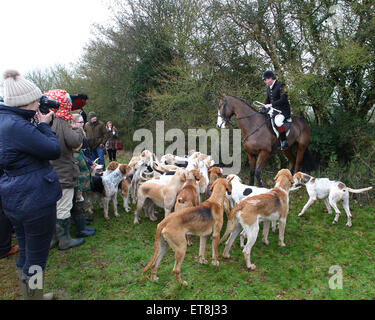 puckeridge hunt meet cardinals