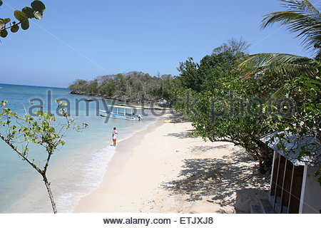 Hidden Jamaican paradise - Stock Photo
