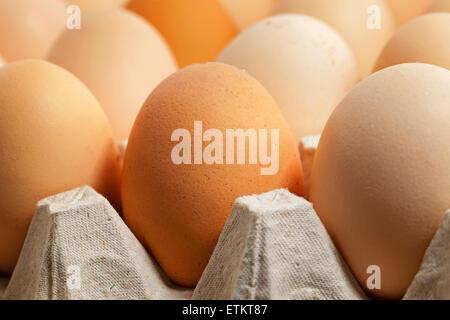 eggs. close up - Stock Photo