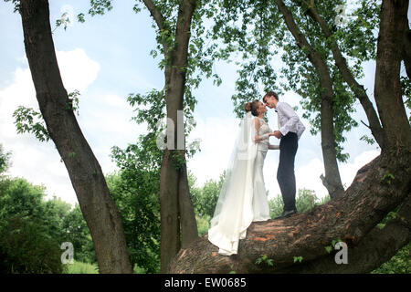 Bride and groom on the tree - Stock Photo