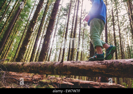 Low angle view of a boy walking across a tree trunk - Stock Photo