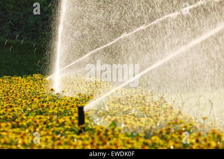 Sprinkler system in garden - Stock Photo