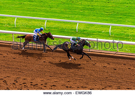 horse racing on the dirt track at keeneland racecourse lexington stock photo 93802634 alamy. Black Bedroom Furniture Sets. Home Design Ideas