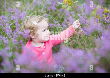 Cute happy baby girl playing with beautiful purple flowers in a heather landscape in Holland - Stock Photo