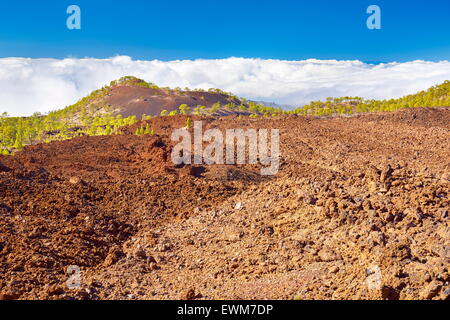 Volcanic landscape, Teide National Park, Tenerife, Canary Islands, Spain - Stock Photo