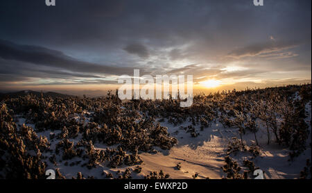 Beautiful sunrise above Tatra Mountains, view from Babia Gora National Park, Poland - Stockfoto