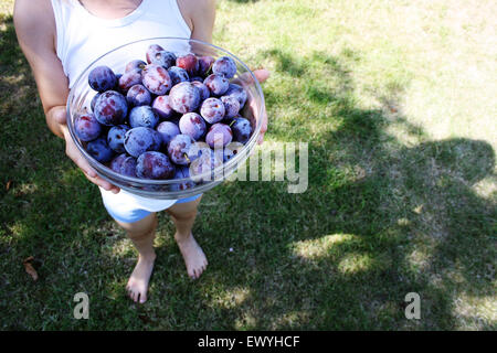 Close-up of a boy holding a bowl of plums - Stock Photo