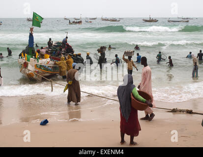 Noukchott, Mauretania. 16th June, 2015. Fishing boats are being unloaded on a beach near the harbour of Noukchott, - Stock Photo