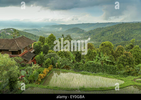 View to the mountains with rice terraces and house on the left side in the foreground. horizontal photo taken in - Stock Photo