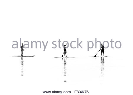 Stand up paddle boarders on a hot hazy summer day on Lake Ontario in Toronto Ontario Canada - Stock Photo