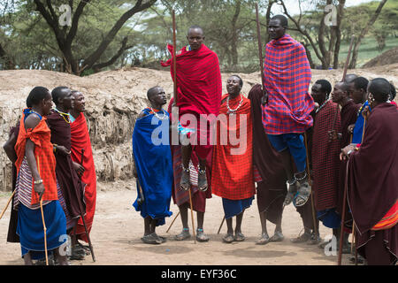 Maasai warriors jump during traditional dance at their village in Ngorongoro Crater Conservation Area; Tanzania - Stock Photo