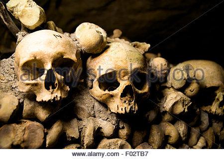 Skulls in the Catacombs, Paris - Stock Photo