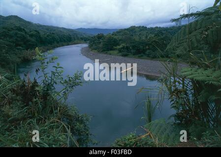 Jamaica - Surroundings of Port Antonio. The Rio Grande and the tropical forest. - Stock Photo