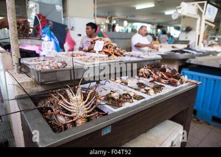 Panama city panama the buzzing mercado de mariscos for Fish market panama city beach