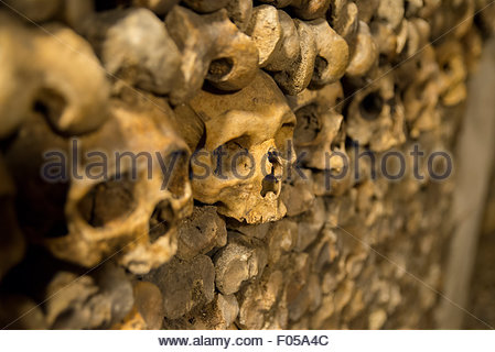 Skulls in the catacombs, Paris, France - Stock Photo