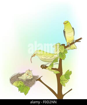 hand drawn little green birds feeding their young in the nest - Stock Photo