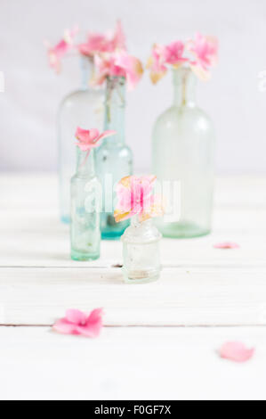 pink hydrangea flower heads in miniature vintage glass bottles - Stock Photo