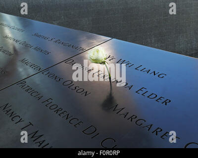 New York, NY, USA. 25th July, 2015. July 26, 2015 - New York, New York, USA - A rose is placed at the National September - Stock Photo