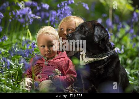 Young boy sitting with baby sister and dog in bluebell forest - Stock Photo