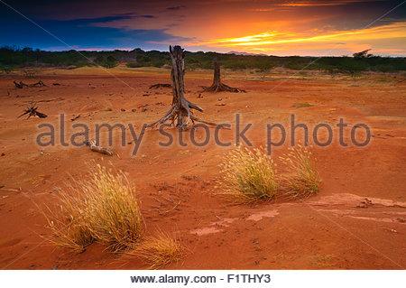 Sunset in Sarigua National Park (desert), Herrera province, Republic of Panama. - Stock Photo