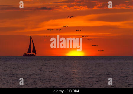 Sailboat sunset fantasy with a silhouetted boat sailing along its journey against a vivid colorful sunset with birds - Stockfoto