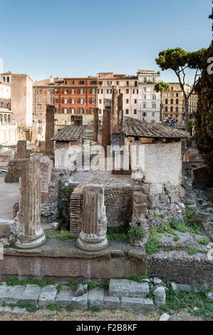 Rome, Italy - August 4, 2015: Temples of Largo di Torre Argentina, Rome - Stock Photo