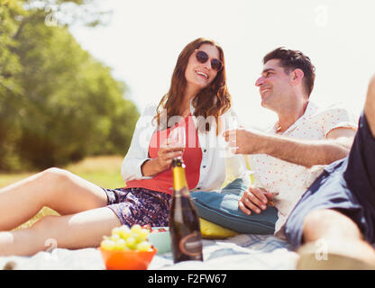 Couple drinking champagne on picnic blanket in sunny field - Stock Photo