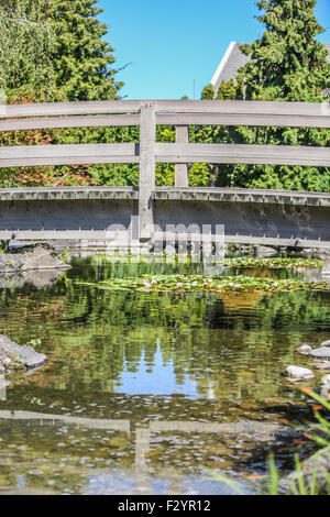 Wooden curved bridge over pond in the missouri botanical for Koi fish pond kelowna