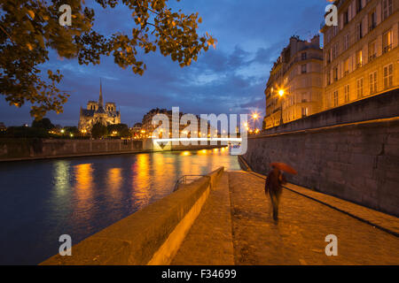 Notre-Dame Cathedral and the Île de la Cité from Ile St Louis at night, Paris, France - Stock Photo