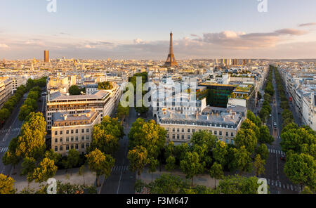 Paris from above showcasing rooftops, the Eiffel Tower,  Paris tree-lined avenues with their haussmannian buildings. - Stock Photo