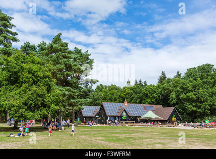 High Lodge Visitors Centre in Thetford Forest, Norfolk, England, UK - Stock Photo