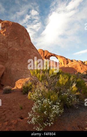 Skyline Arch, Windows Trail, Arches National Park, Utah - Stock Photo