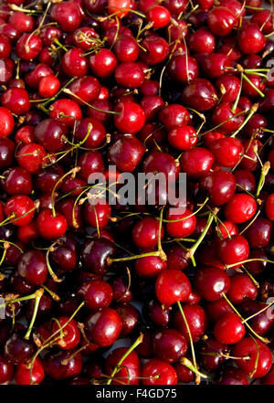 Background (texture) of red cherries, vertical orientation. - Stock Photo