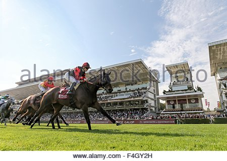 Paris, France. October 3rd, 2015. FRANCE, Paris: French jockey Vincent Cheminaud (C) is about to win Qatar Grand - Stock Photo