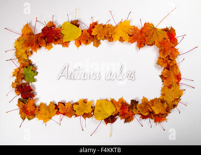 Rectangle shaped frame made out of autumn leaves. Space for text in the middle. - Stockfoto