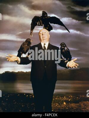 the similarities of alfred hitchcock and Free essay: the birds the birds, the movie was directed by alfred hitchcock and was based on the short story the birds written by daphne du.