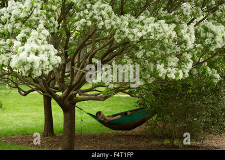 A photograph of an anonymous couple relaxing in a hammock under a cherry blossom tree in Forsyth Park in Savannah, - Stock Photo