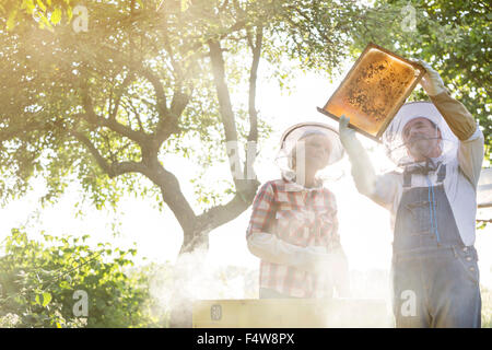 Beekeepers in protective hats examining bees on honeycomb - Stock Photo