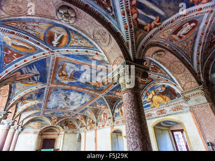 Frescoes of Buonconsiglio, ancient castle of Trento. Focus on the right column - Stock Photo